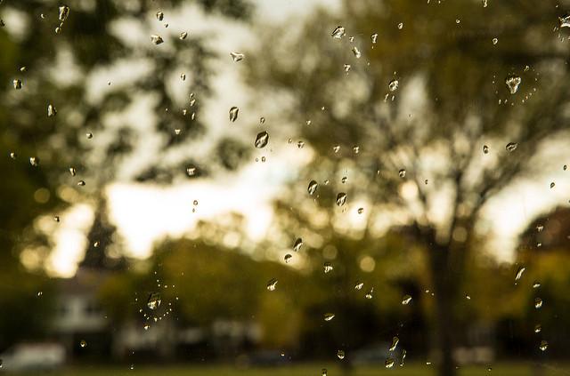 spring prep - Rain